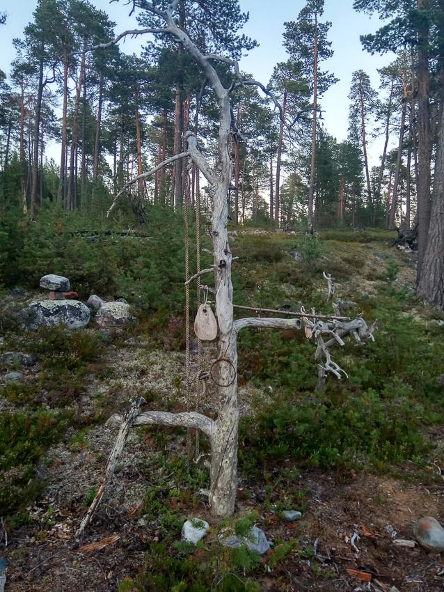 Дерево шаманов